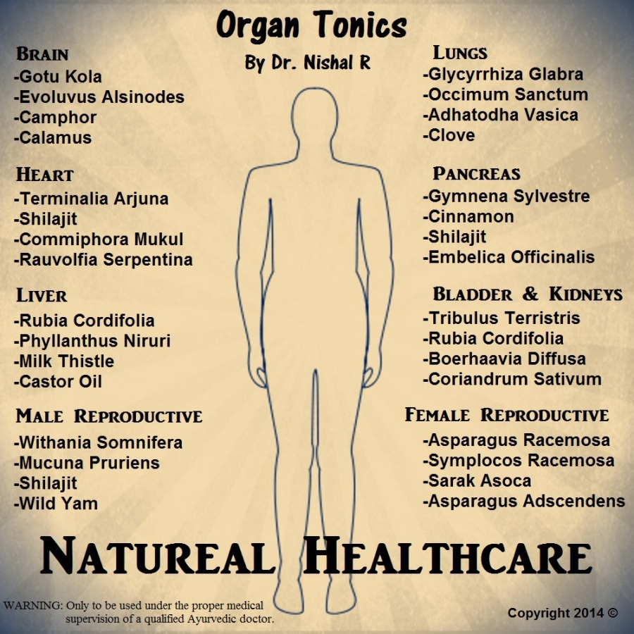 Rejuvenate and restore each organ to optimum functioning level