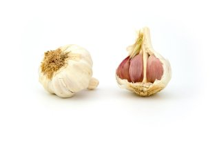 garlic-1808